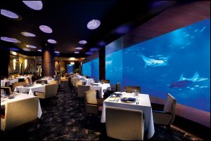 出店 : http://catcora.com/wp-content/uploads/2014/08/ocean-restaurant-by-cat-cora.jpg