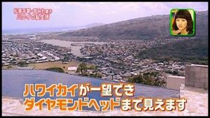 出典 : http://www.bennricho.com/_files/category3/hawaii3.jpg
